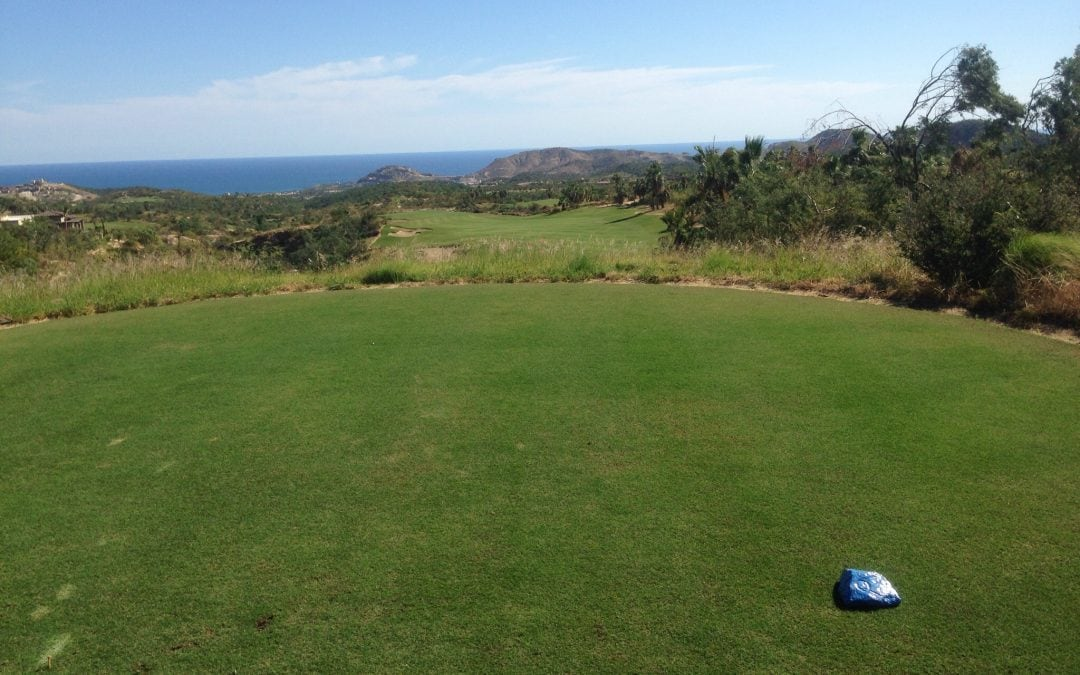 Golf in Los Cabos after Hurricane Odile